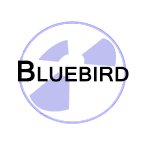 Bluebird Radiators