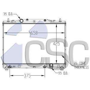 CSC2565